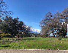 Jackson Oaks Dr, Morgan Hill, CA 95037